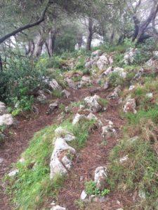 Monte Solaro, Wandern auf Capri