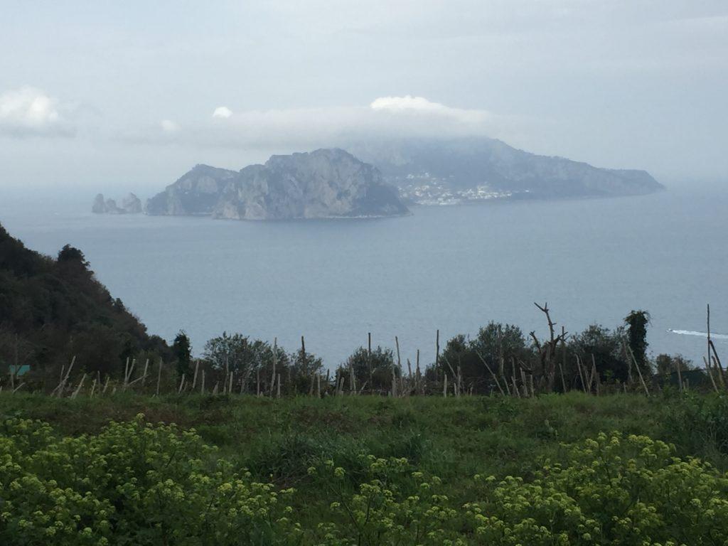Wandern zur Punta della Campanella mit Blick auf Capri