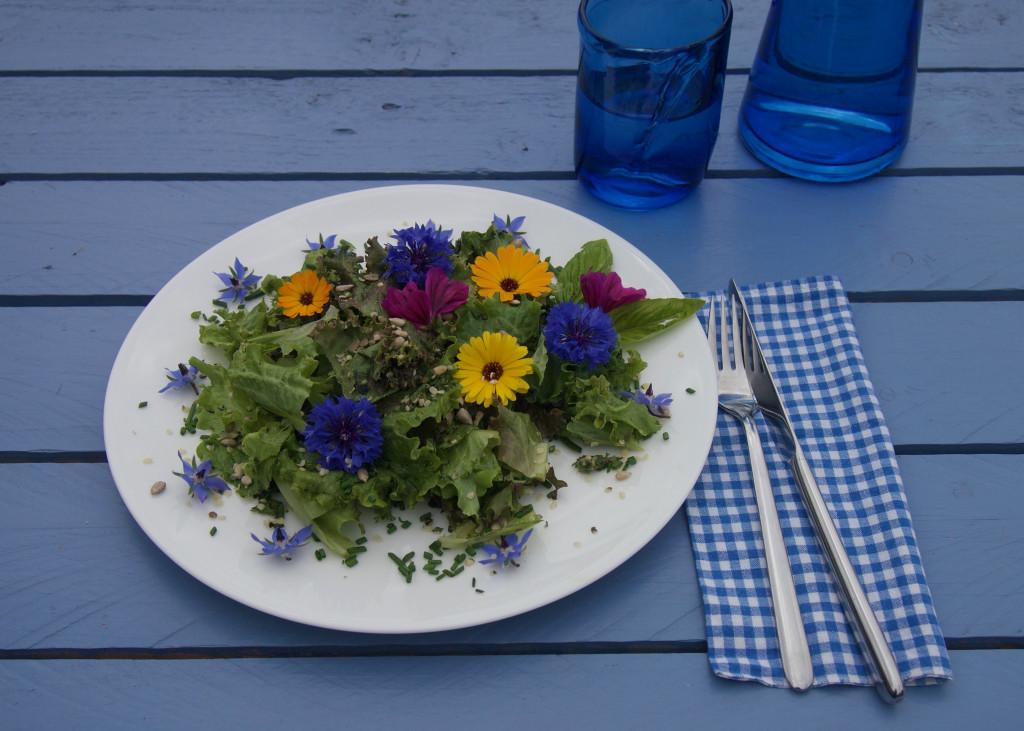 Den Garten auf den Teller geholt