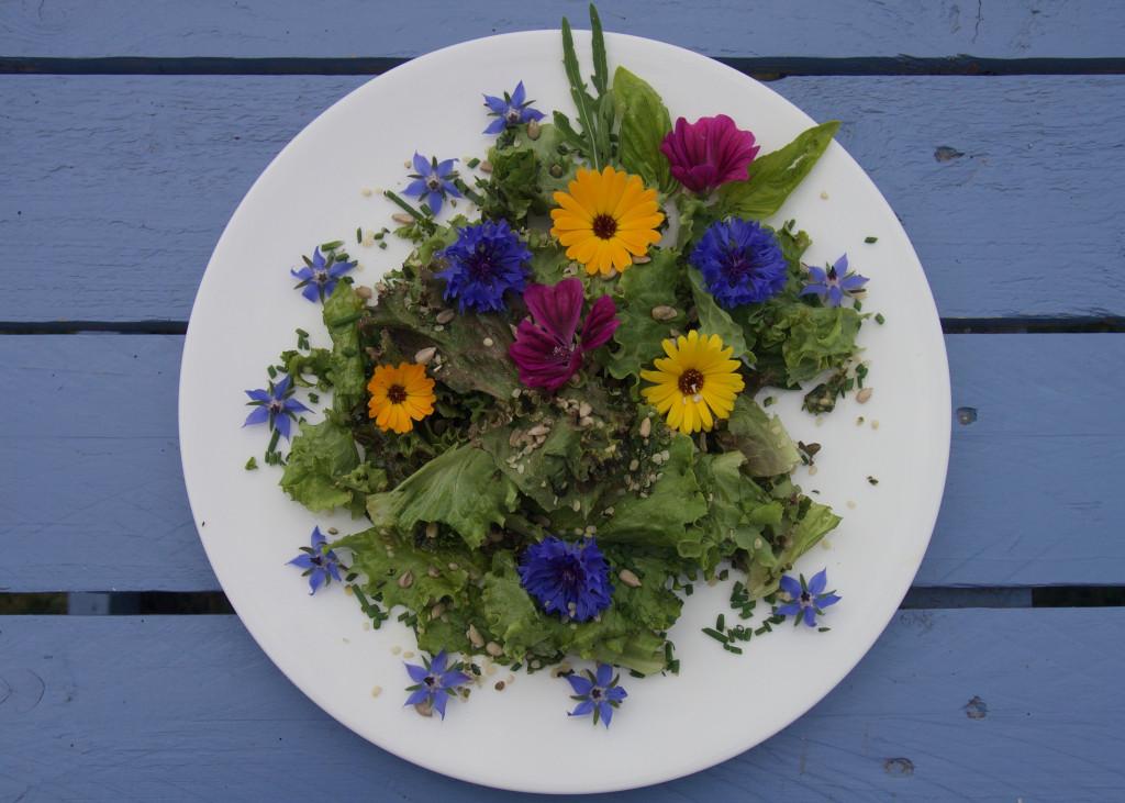 Blüten Salat Omega-3-Fettsaäuren