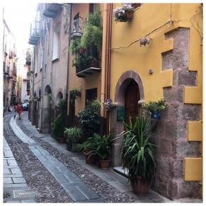 Italienisches Kopfkino. Ein Sommer auf Sardinien