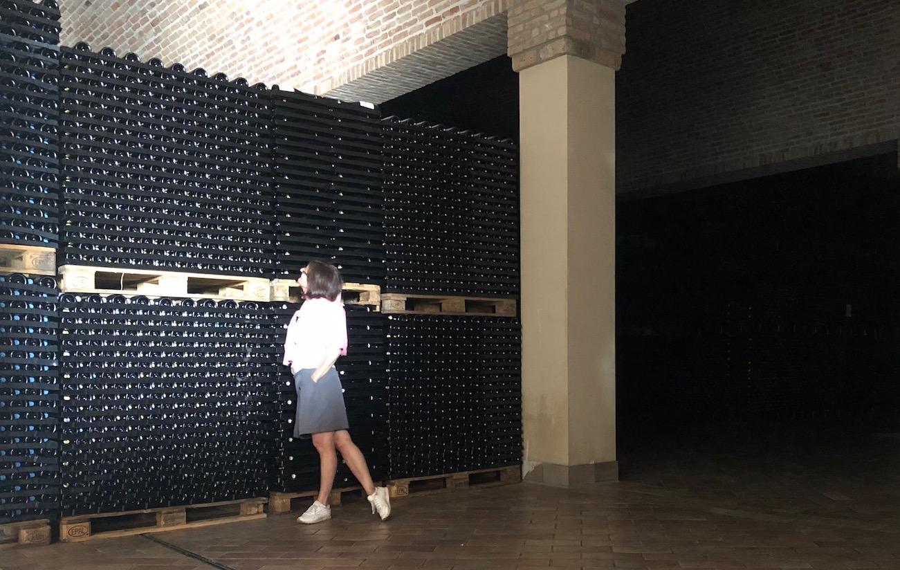 Bloggerin Ulrike Schmid im Weinkeller von Corte Aura in der Franciacorta